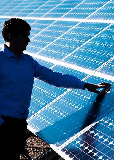 Engineer looks at solar panel array